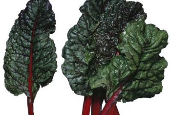 Swiss chard is nutritious and ornamental.