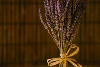 Dried lavender blooms create a relaxing aroma.
