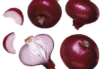 Onion sets can produce mature bulbs in a few months.