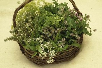 Fresh herbs need a garden area without exposure to hazards.