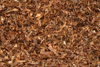 Wood chips used as mulch eventually break down, improving the soil underneath.