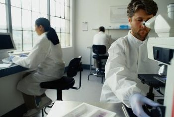 Federal and state governments hire thousands of chemists in various capacities.