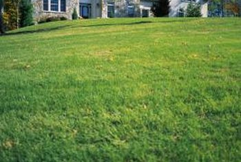 Change the blades on a zero turn mower for a neat and healthy looking lawn.