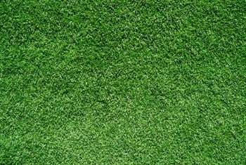 Artificial grass works well in water wise landscapes, as it requires no moisture.