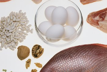 Protein-based foods help you feel fuller for longer.