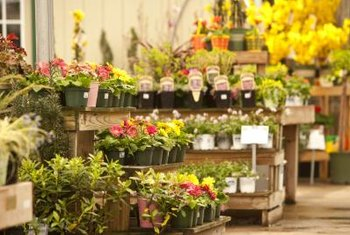 Determine the value of your flower shop before putting it up for sale.