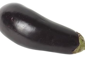 Eggplants bruise easily and require careful handling.
