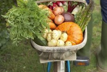Successful planning can yield bountiful harvests throughout the season.