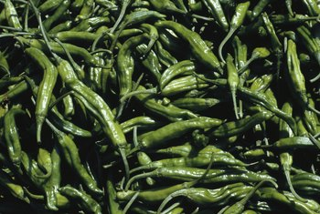 Green chili makes a worthwhile addition to your diet.
