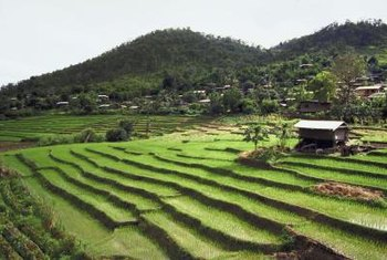 Terraces decrease erosion and rapid water flow, making an unworkable hill workable.