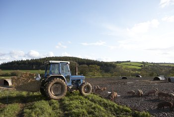 Starting a farm is much easier when part of your funding comes from grants.