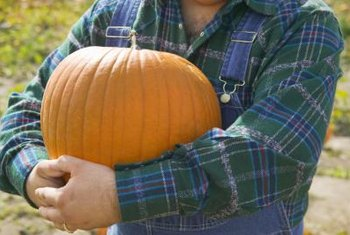 A perfectly smooth surface on a pumpkin may not be desired.