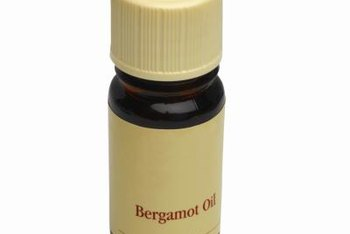 Bergamot oil comes from the rind of bergamot oranges.