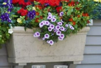Window boxes are easy to place on vinyl siding.