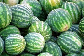 Roadside stands allow farmers to sell their melons directly to customers.