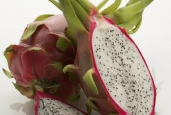 Dragon fruit requires a warm climate to produce its signature fruit.