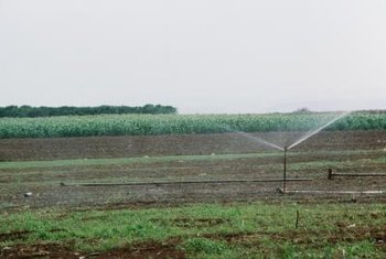 Raised sprinklers have a larger coverage area.