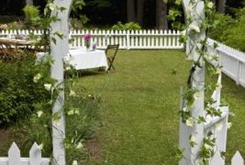 An arch makes a lovely entryway for your garden or yard.