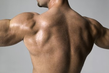 Use an Olympic triceps bar to work your back, biceps and shoulders.