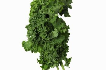 Kale chips can be a nutritious snack.