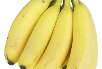 "Edible bananas are the benefit of growing ""Lady Finger"" banana trees."