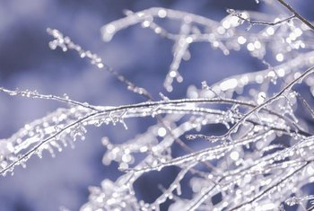 With a few tree branches, paint and some faux ice, bring the frozen beauty of winter into your home.