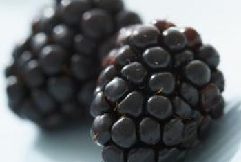 Blackberries come in wild and domestic varieties, both with or without thorns.