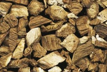 Burdock root is high in diabetes-treating inulin.