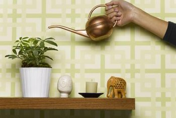 Skip the watering can routine by making clever self-watering objects.