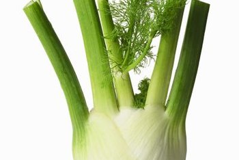 Fennel is not the perfect garden plant.