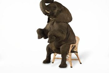 Elephant on a chair? Why not! Attention-grabbing marketing is all about embracing the sensational.
