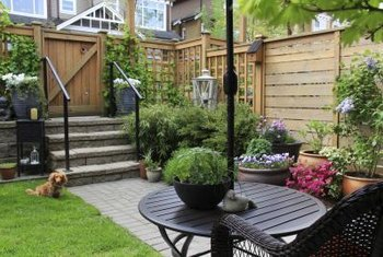 For a varied container garden, use plants of different heights.