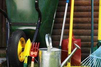 Sanitize your gardening tools to prevent disease.