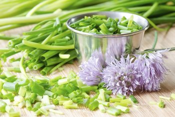 Chives' flowers and leaves are edible.