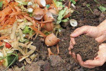 A composter makes it simple to turn scraps into compost.