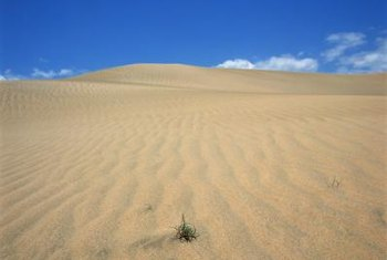Deserts have the least biomass of all ecosystems.