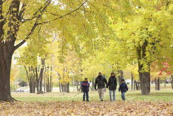 Walking outside can allow you to spend time with your family.
