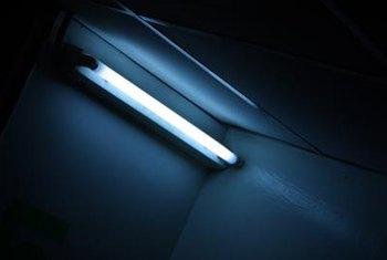Fluorescent light bulbs last longer and are more energy efficient than incandescent bulbs.