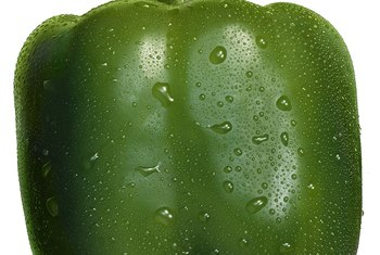 Lack of water is the main reason for undersized green peppers.