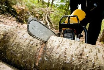 Chainsaws are commonly used to fell trees and cut fallen wood.