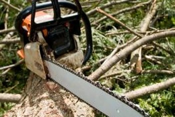 A clean chainsaw is safer to use than a dirty one.