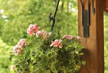 A hanging pot or basket brings the flowers up close and personal.