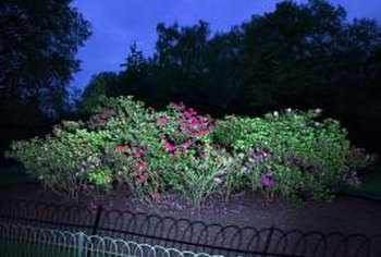 Add decorative wire fencing to create a more ornate garden border.
