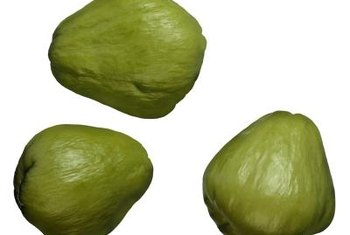 Use chayote fruit like summer squash.