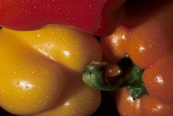 Bell peppers are a summertime favorite.