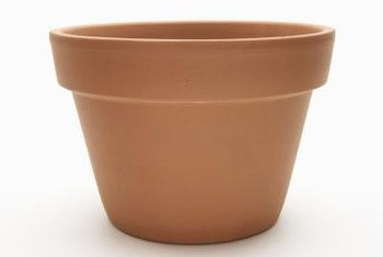 An 8-inch terra-cotta pot holds about 2 1/2 quarts of birdseed.