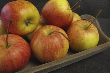 """Gala"" apples may remain on a tree long after they are ripe."