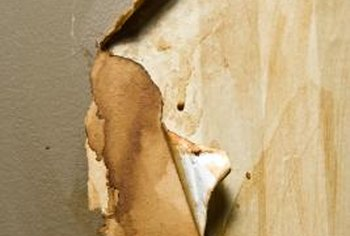 Severely mold-damaged wallboard may have to be replaced.