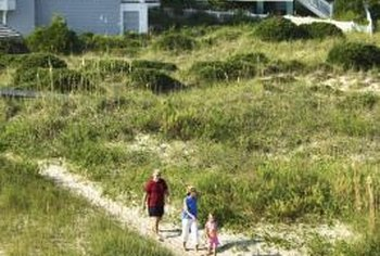 Sand is great for the beach, but needs the right grass for lawn establishment.