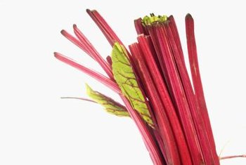 Infrequent divisions help keep rhubarb productive.